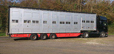 livestock exports from Ireland