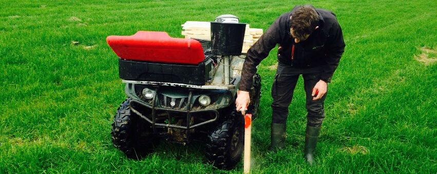 grass testing