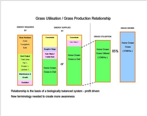 grass utilisation