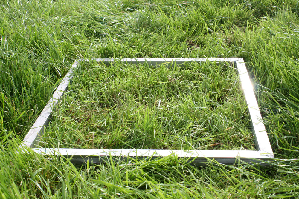 Quadrant for measuring grass