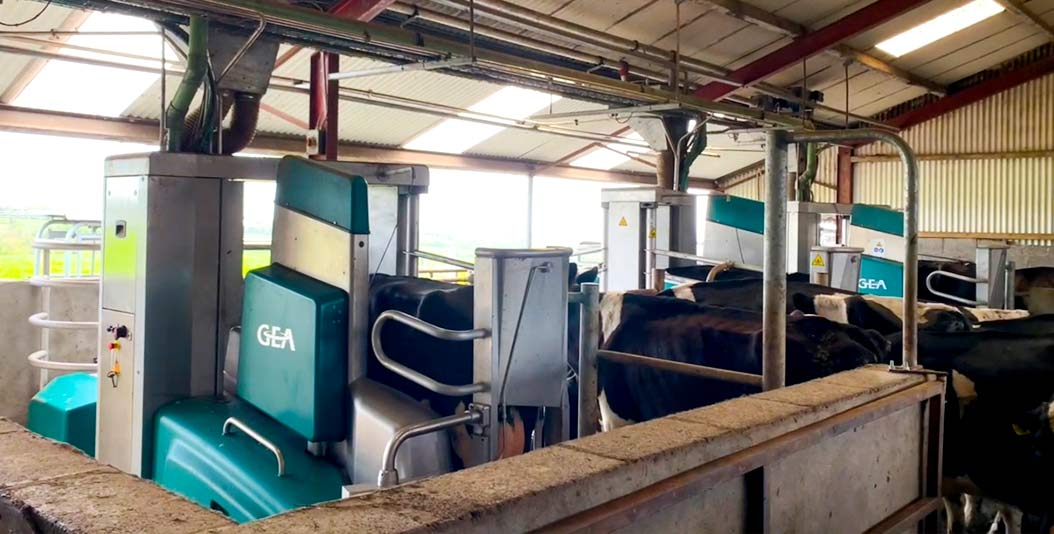Moving to Milking with GEA Robots