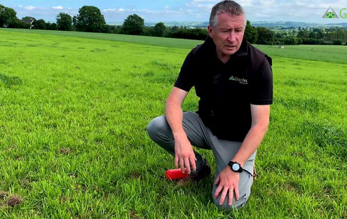How to manage grass in the first year of a reseed with Noel Gowen
