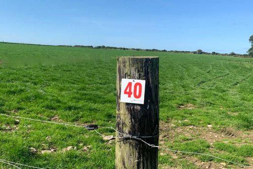 Paddock Numbers - Lean Farming